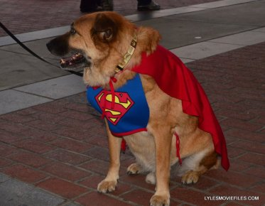 Baltimore Comic Con 2015 cosplay - it's Superdog