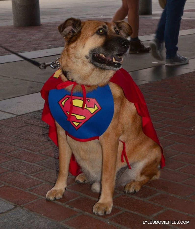 Baltimore Comic Con 2015 cosplay -Superdog