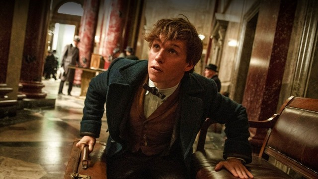 fantastic beasts and-where-to-find-them