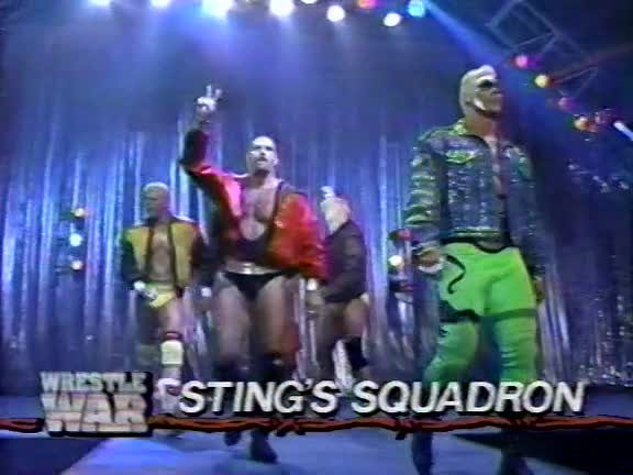 sting's squadron