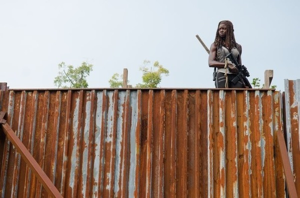 the walking dead the next world review - michonne