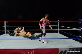 Wrestlemania 13 - Bret Hart vs Stone Cold - going to Pillmanize Austin
