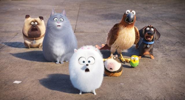 The Secret Life of Pets review - Mel, Chloe, Gidget, Norman, Tiberius, Sweetpea and Buddy-min