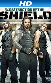 WWE The Destruction of the Shield