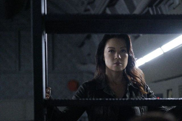 Agents of SHIELD The Return - May