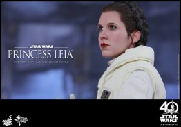 Hot Toys Princess Leia Hoth figure -concerned look
