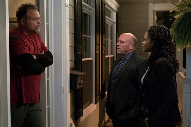 death wish movie review 2018 - vincent d'onofrio, dean norris and kimberly elise