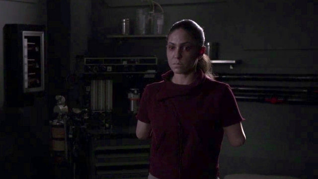 agents of shield past life review - future elena