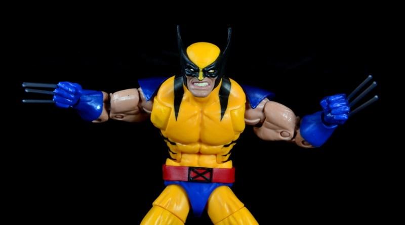marvel legends wolverine figure review - wide shot