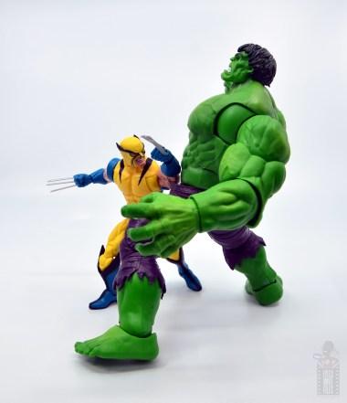 marvel legends hulk vs wolveringe figure review 80th anniversary - wolverine slashing hulk