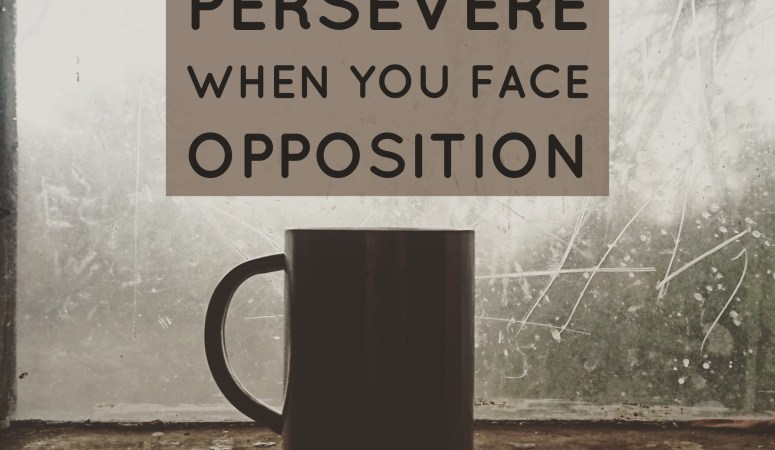 4 Ways to Persevere When You Face Opposition