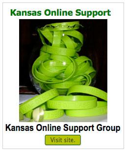 kansas-online-support