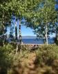Bristlecone Pine Beach