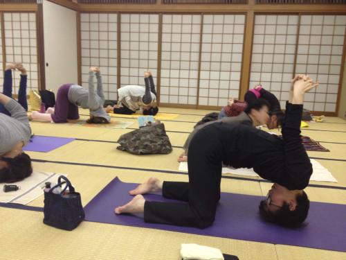 56会 H24.11 yoga3s