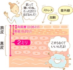 image01[1]