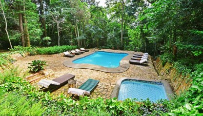 lynaconcepts.com_blog_rain_forest_lodge