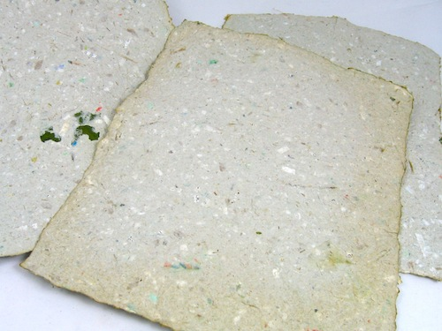Hosta/recycled mail paper