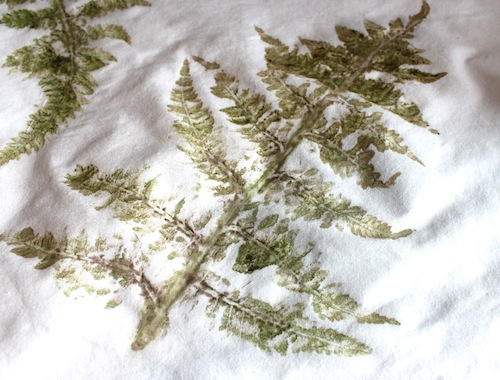 Hammered Fern