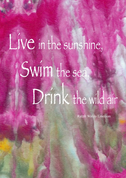 Live Swim Drink quote