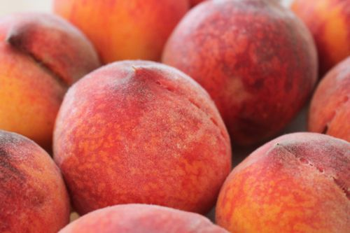 A few of Reid's peaches