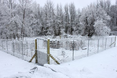 Our new garden fencing