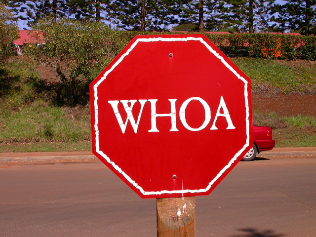 Red stop whoa sign