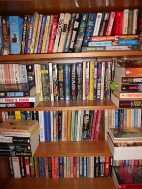 Image of stacks of books on full bookcase--alas I do hoard paper but is it OCD or OHO?Lynette M. Burrows, author; Lynette M. Burrows, science fiction author; Lynette M. Burrows, action-adventure science fiction