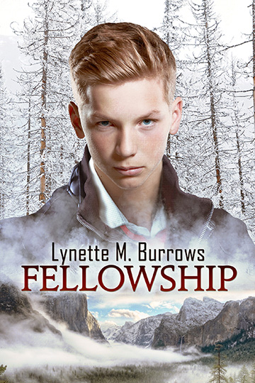 Cover Fellowship one of the books by Lynette M. Burrows