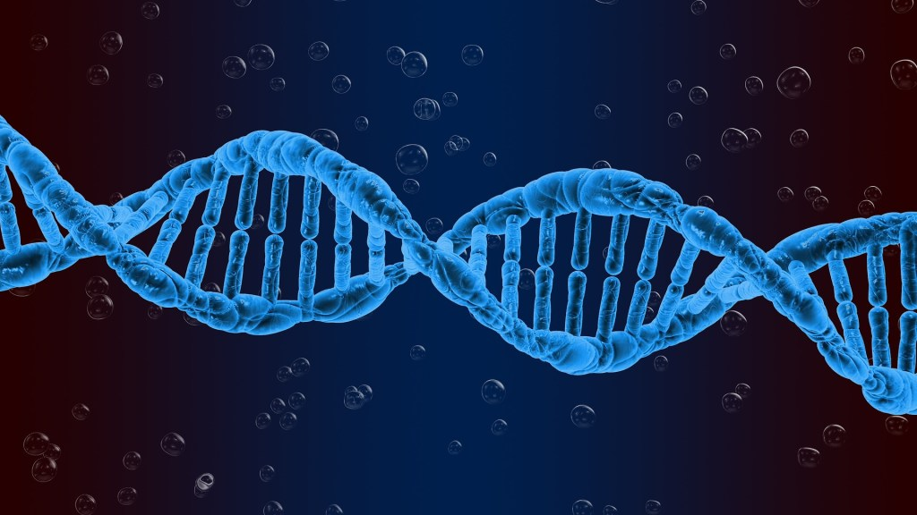 image of a strand of blue DNA against a dark blue background--one of the things we can now manipulate for biotechnology