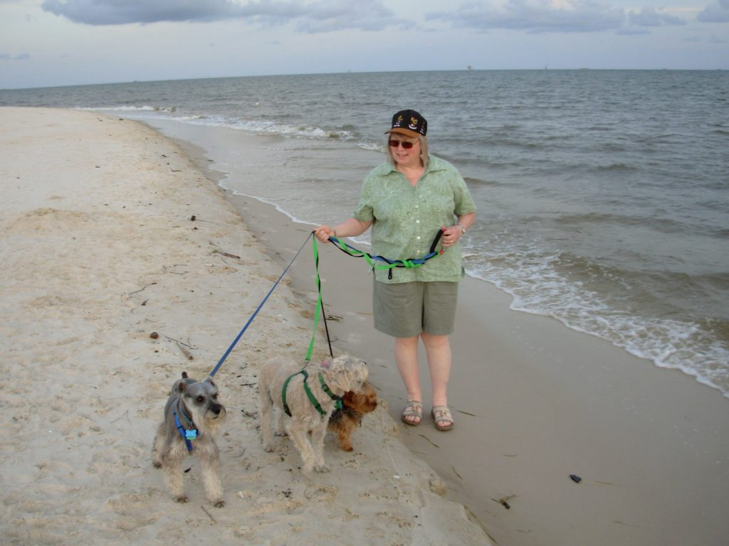 Image of Lynette M. Burrows walking on along the ocean with her three dogs. Nemo, a salt and pepper schnauzer, Cosmo a mix breed, and Astro a Yorkie.