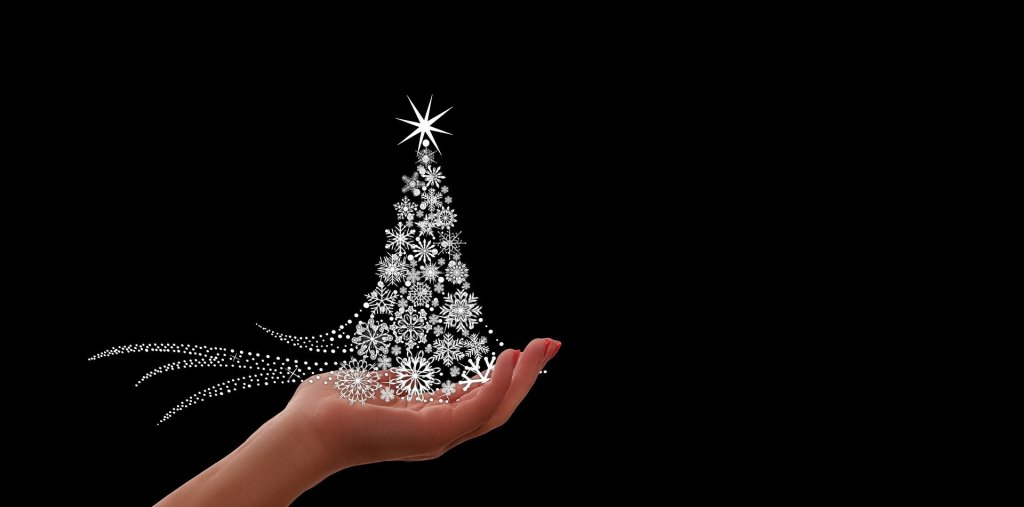 Image of a hand holding a Christmas tree of silver snowflakes and stars celebrating the Most Special Month