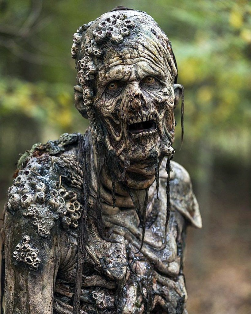 image of a gray zombie--Do you read zombie stories?