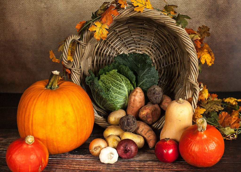 a fall leaves decorated harvest basket full of gourds and kale and potatoes and pumpkins--despite all that 202 has thrown at us we have had a productive month