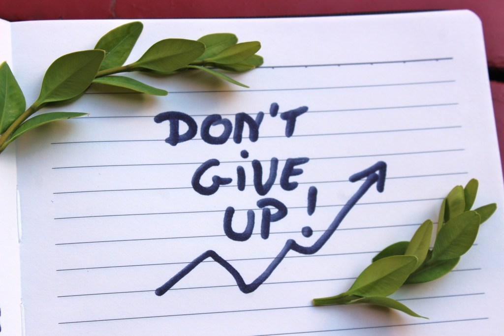 small olive branches above and below the handwritten words don't give up--a sign for when your motivation needs a boost