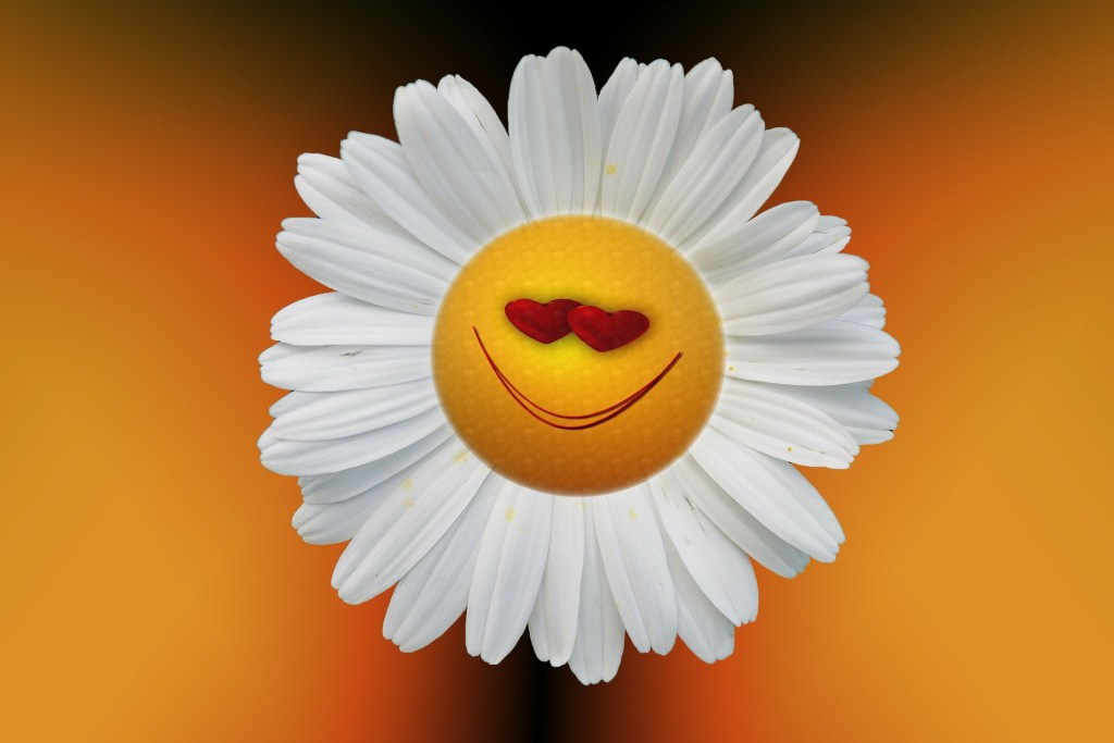A smile face as the center of a daisy--not the kind of positive attitude you need to be resilient