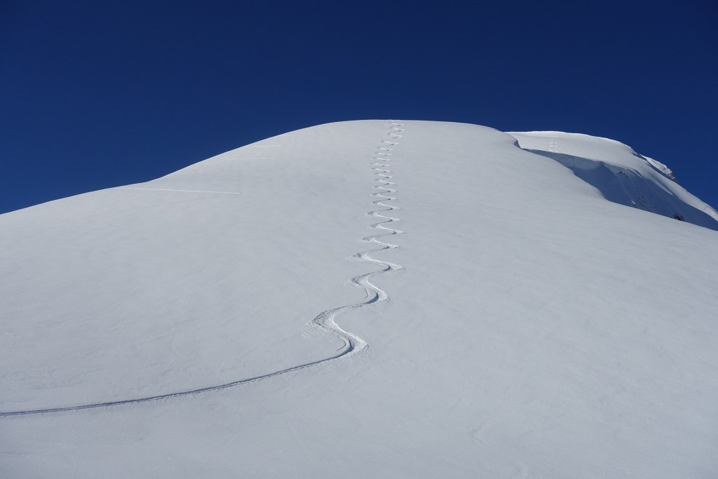 image of a single track from skis coming down the mountain-a symbol for One of the First Women on the National Ski Patrol