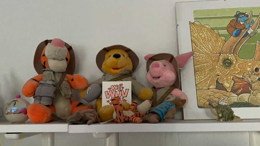 Image of a shelf with a clear ornament holding sand & sea shells, stuffed tigger, pooh, and piglet in safari clothes, an illustration of a blue bear on a triceratops and a ceramic dragon--your joy toolbox can be something like this