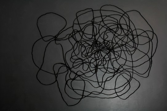 Lyn Horton, Velvet Installation, 2012, approx. 8 feet h x 10 feet wide, velvet tubing and steel brads on black painted wall