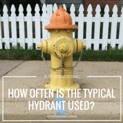 JUST WONDERING - How often is the typical hydrant used?