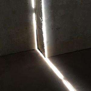 Human/Nature seeks light