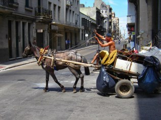 Collecting trash in Montevideo