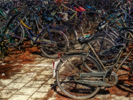 bicycles at Rotterdam Central Station