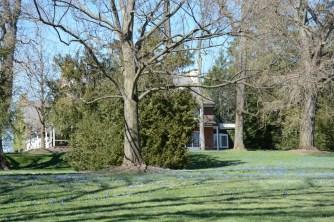 Longwood Gardens March 29 2017 (6) (1024x683)