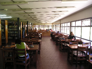 People using library