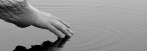 A hand gently touches water, leaving ripples across the surface of the pond.