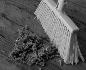A broom and dust on a hardwood floor.