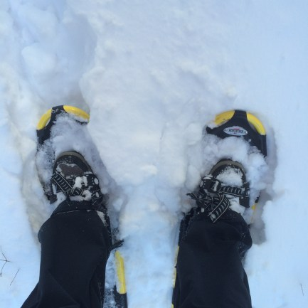 """I'm guessing about 5-6"""" of snow. That's about my minimum for snowshoes."""