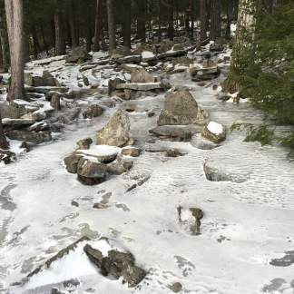 The Glade is covered in ice.