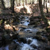 Stream at the end of the Piper Mountain trail by the Belknap Mountain carriage road.
