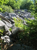 A boulder field just off the trail to the left.